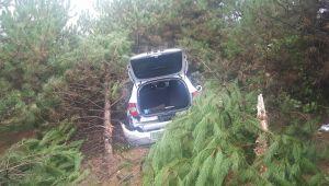 Yoldan çıkan otomobil ağaçların arasına daldı