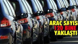 Araç Sayısı 120 Bine Yaklaştı